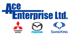 Ace Enterprise Logo (PNG)